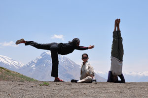 The Yongs at Spiti Valley at 4600m